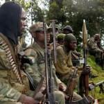 Governo do Congo anuncia vitória sobre os rebeldes da milícia M23
