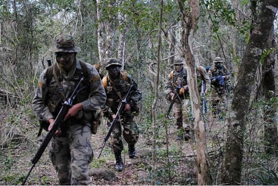 OP Guarani3