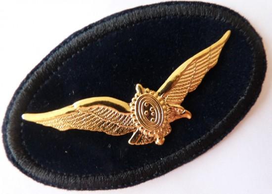brev-eb-metal-piloto-de-combate-da-aviaco-do-exercito-12035-MLB20053068396_022014-F