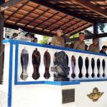 Escola de Artilharia de Costa e Antiaérea – Diplomação