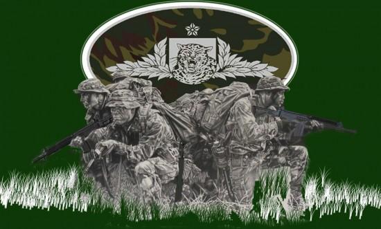 guerra_na_selva_by_fabri-d41jilh
