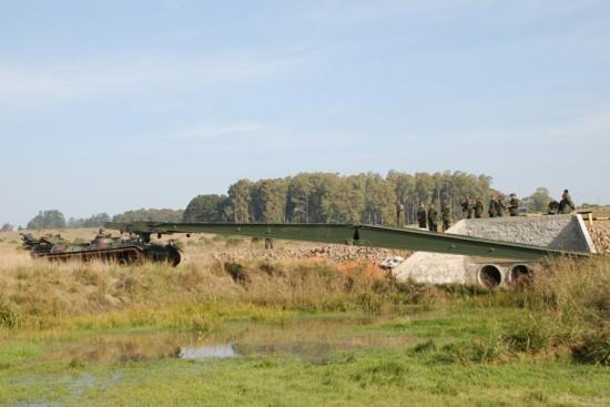 VLP Leopard.8