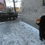 Milicianos de Donbass atuam como Estado e não como rebeldes