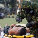 Brasil se consolida como referência internacional em DBQRN