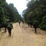 Cia Prec Pqdt realiza semana da selva do curso de precursores paraquedista