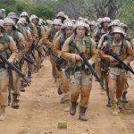 Estágio de Adaptação na Caatinga e a Operação Calango