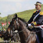 Festa da Cavalaria do CML