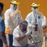 Marinha do Brasil atua na retirada de passageiros de navio em Recife